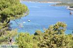Bij Atsitsa | Skyros Griekenland foto 4 - Foto van De Griekse Gids
