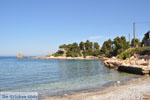 Bij Atsitsa | Skyros Griekenland foto 13 - Foto van De Griekse Gids