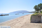 Bij Molos en Magazia | Skyros Griekenland foto 12 - Foto van De Griekse Gids