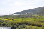 Kalamitsa  | Skyros Griekenland foto 1 - Foto van De Griekse Gids