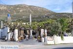Taverna Mouries Skyros | Griekenland foto 1 - Foto van De Griekse Gids