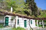 Kerk Agios Dimitrios | Binnenland Skyros foto 19 - Foto van De Griekse Gids